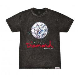 Diamond Splash Sing Mineral Wash Tee πολύχρωμο